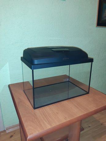 Akwarium 25 litrów Aquael w idealnym stanie zadbane z pokrywą+tło