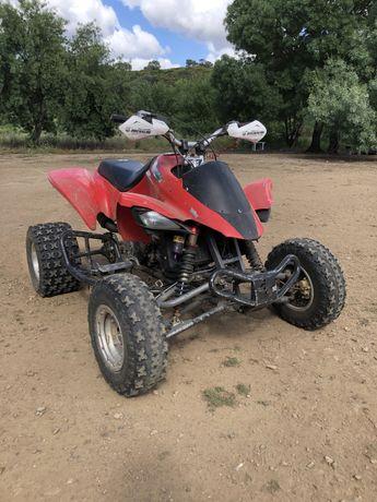 Moto 4 Gasgas 450 wild hp
