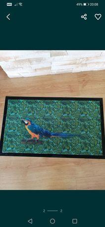 Wycieraczka z motywem papuga