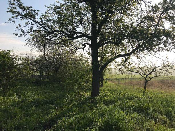 Продаж земельної ділянки і дома в селі