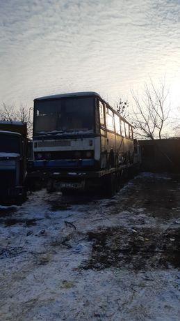 Икарус  karoza автобус транспорт