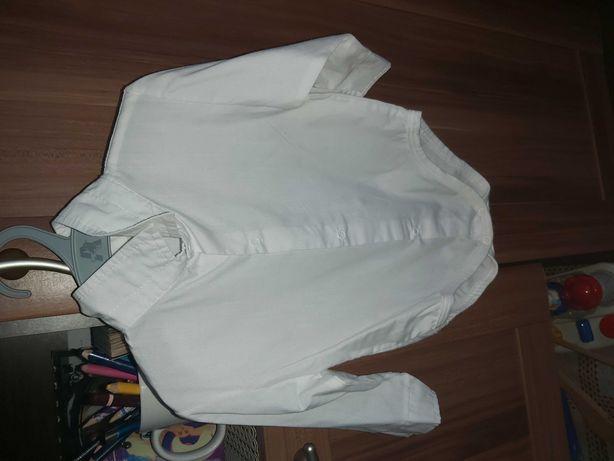 Koszula i koszulobody 86
