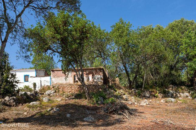 Terreno com Ruina, Silves, Algarve