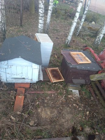 Ul ule pszczelarstwo pszczoły ramki nadstawki korpus podkarmiaczki