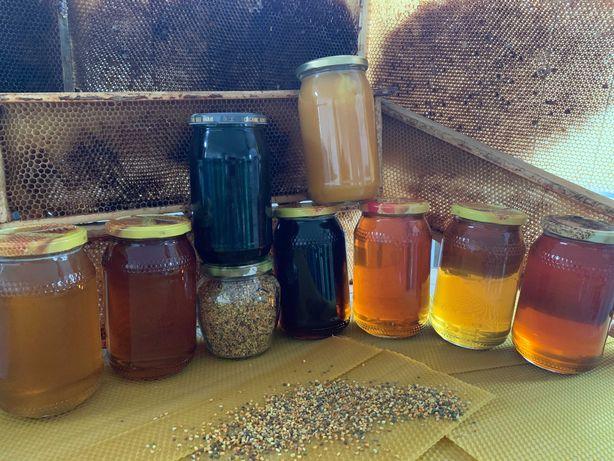 Miód Hurt słoik 0,9 1.2KG  pszczoły rodziny pasieka odkłady Matki