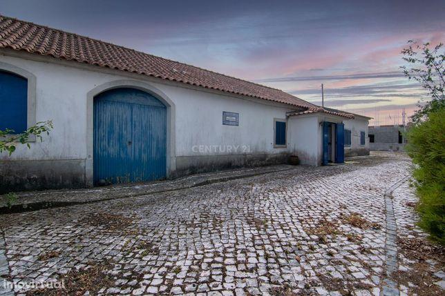 Quintinha Rústica T3 - Rodeio - Vila Verde dos Francos