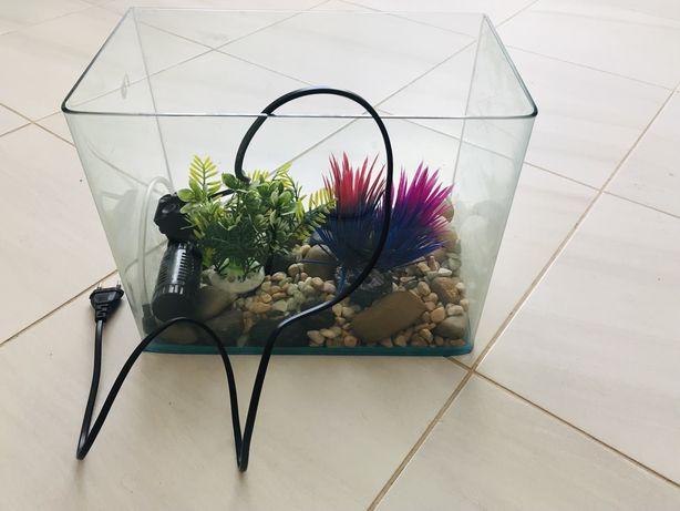 Aquário com decoração e filtro