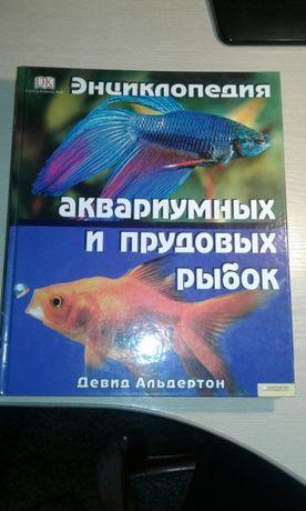 Книга на подарок
