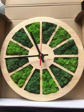 Годинник зі стабілізованим мохом