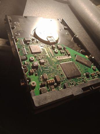 Dysk HDD do komputera