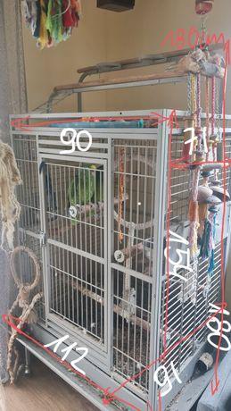 Klatka dla dużej papugi King Cage
