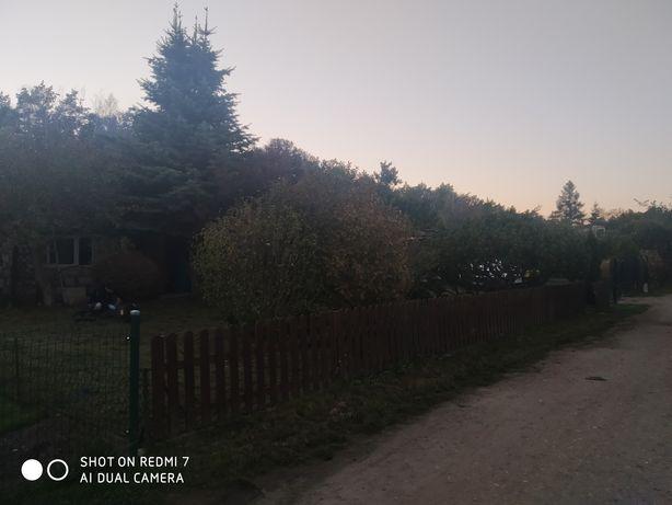 Działka ROD Poznań ul Bukowska