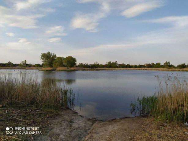 Продам участок возле озера в с. Новое Залесье.