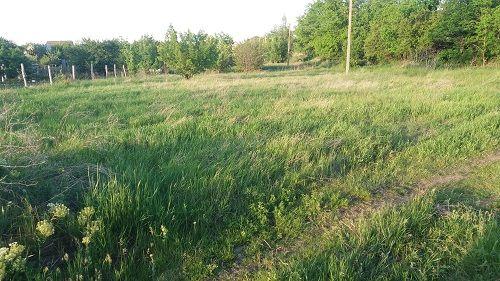 Участок земли 10 соток приватизированный Жадова. Соколовка