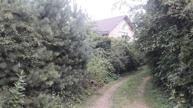 Дом в лесу Бровары Гаевое(Фрунзовка)