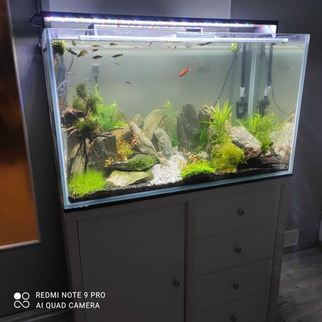 Akwarium optiwhite 10mm nowe