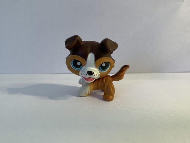 LPS Littlest Pet Shop - figurka pieska