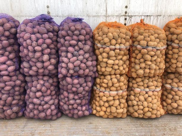 Ziemniaki 8 t drobne
