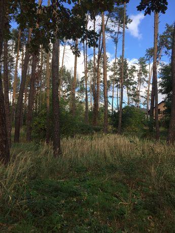 """Буча (лісова), земельна ділянка 10 соток, """"під будівництво""""."""