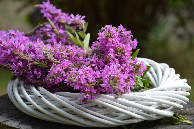 Wianek wiklinowy Dekoracje ślubne Wesele Przyjęcie Kompozycje kwiatowe