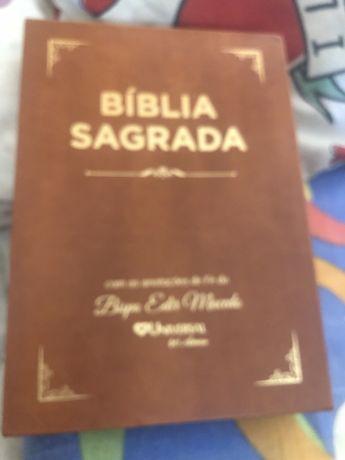 Vendo uma Biblia sagrada