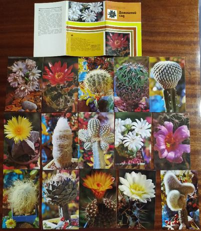 Продам набор открыток моделей для вязания и кактусов