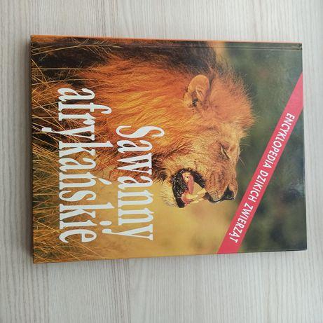 Encyklopedia dzikich zwierząt Sawanny afrykańskie