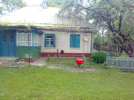 Дом в селе Лихолиты