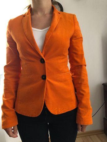 Marynarka Montego XS pomarańczowa halloween