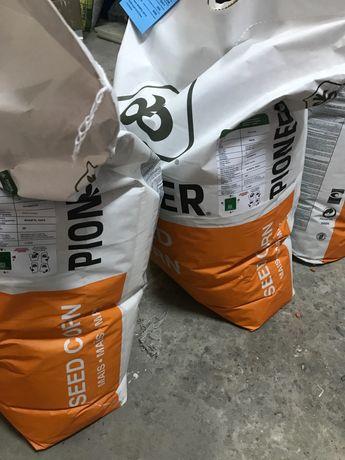 Пионер Піонер ФАО 270 330 Насіння кукурудзи семена кукурузы PR39B76