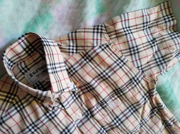 Burberry koszula chłopięca na 80 cm sweet