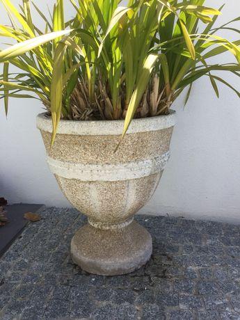 Vaso de orquídeas