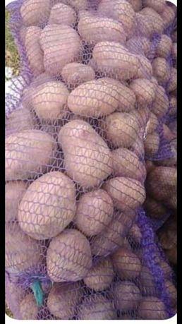 Картопля продам картошку
