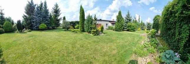 Całoroczny parterowy dom z pięknym, dużym ogrodem - Stary Wylezin