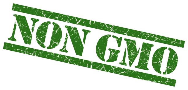 sruta sojowa NON GMO 46% białka