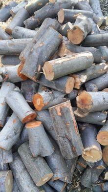 Drewno opałowe,buk,gałęziówka