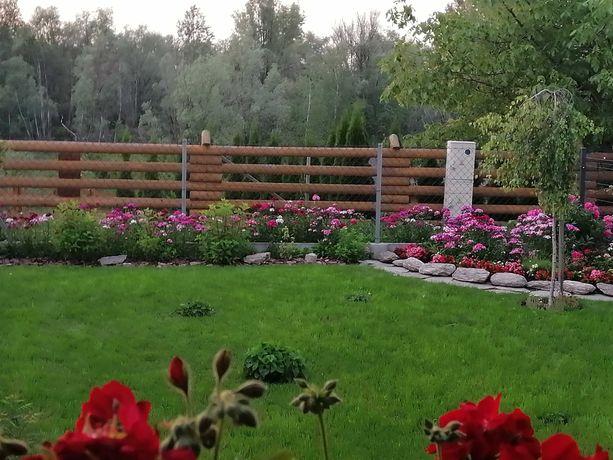 Mieszkanie umeblowane z ogródkiem