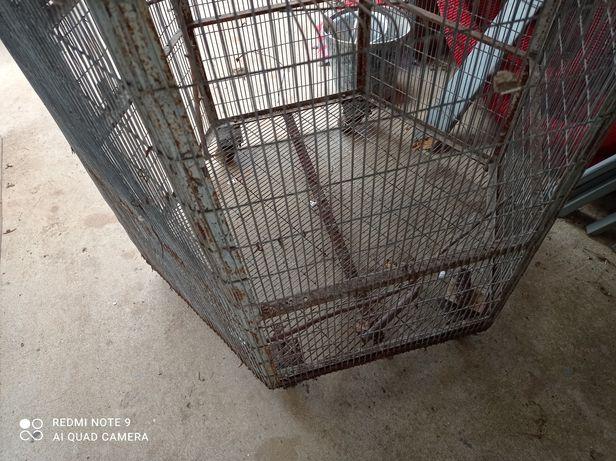 Viveiro usado para venda ou troca por aves