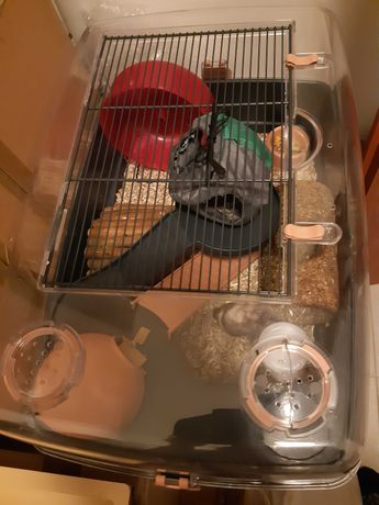 Klatka dla chomika, myszy z wyposażeniem i lokatorem!
