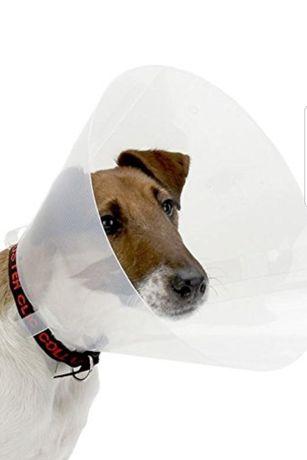 Colar cão Buster 25 cm