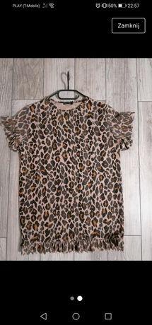 Bluzeczka panterka L
