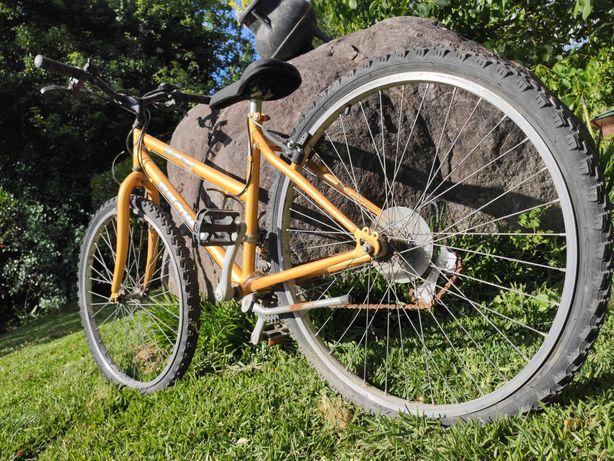 Bicicleta Laranha