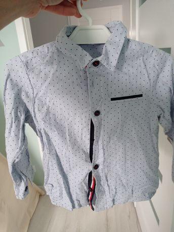 Koszula długi rękaw elegancka Cocodrillo 92