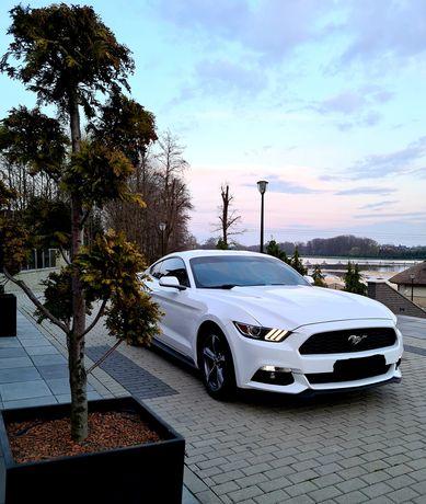 Ford Mustang samochód na Wesele/Ślub Wynajem do ślubu