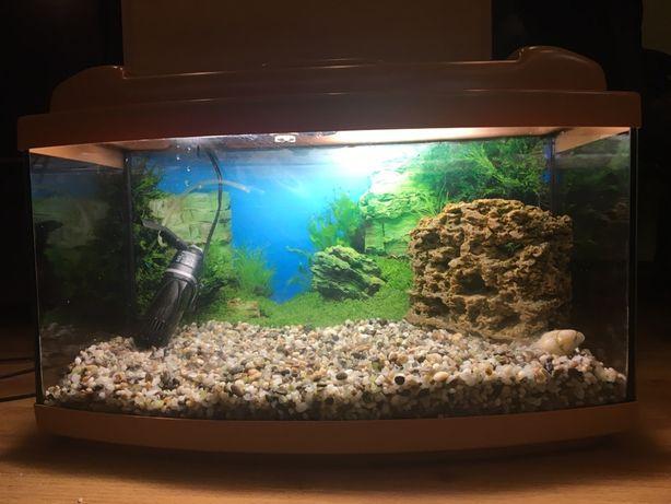Продам акваріум Diversa