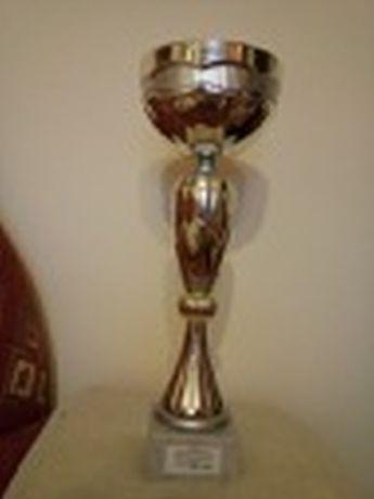 Puchar cały złotawy z 2012 r.