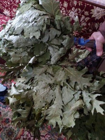 веники для бани из красного канадского дуба
