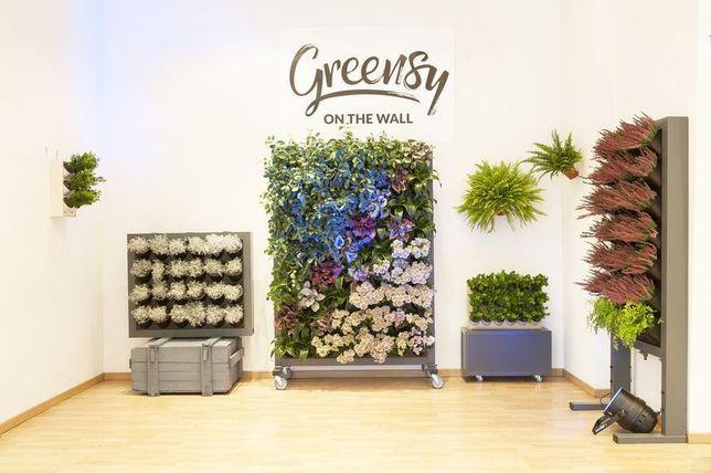 GREENSY Ogród wertykalny Pixel garden Zielona ściana Mech chrobotek