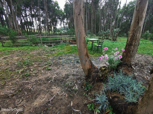Terreno agrícola 2.000m2 em A dos Cunhados.