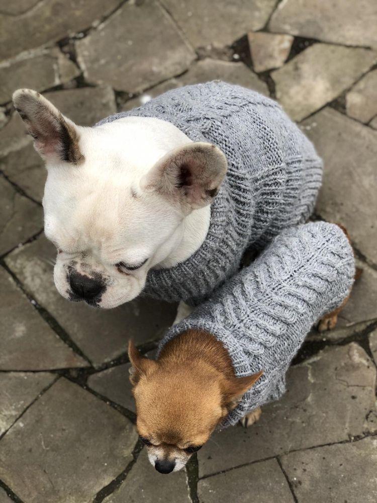 Одежда вязаная для собак